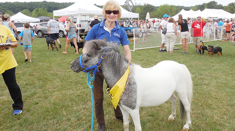 TV personality Laura Hand next to a pony during an event last year. She rides horses on a regular basis, nearly every day — even in the winter.