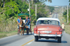 Country road, where cars often share space with horse-drawn carriages. Please take me home!