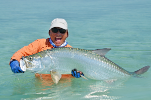 If things went well with my 10 weight fly rod, a large tarpon would be caught, and safely released to fight another day. For larger fish, after carefully looking around for sharks, I'd jump into the ocean and carefully revive them so they could swim off.