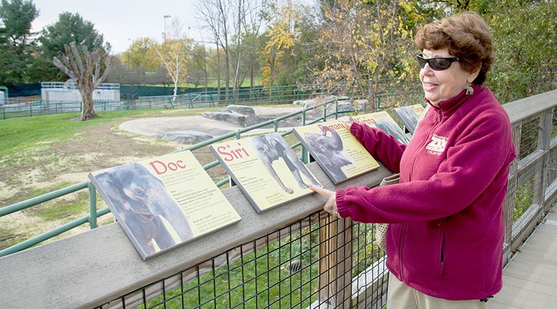 Ellenrose Galgano has been volunteering at Rosamond Gifford Zoo in Syracuse for 28 years. Her colleagues affectionately call her the zoo lady or Mrs. Zookeeper.