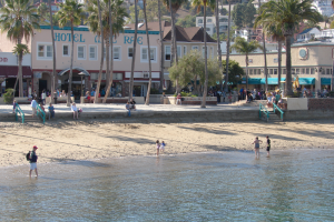 Relax on one of the several beaches in Santa Catalina, including the Middle Beach.