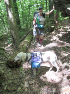 Eva Brigg's trail companion, Nadine, and her golden doodle Yankee.