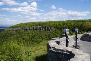 The Indian Ladder Trail at the John Boyd Thacher State Park in Voorheesville is home to one the world's richest fossil bearing formations.