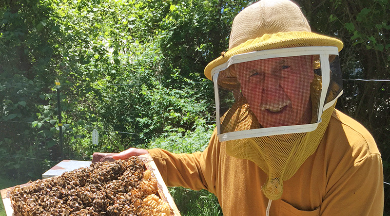 Jim Howard working at his apiary in Oswego. He is also shown at the inset.