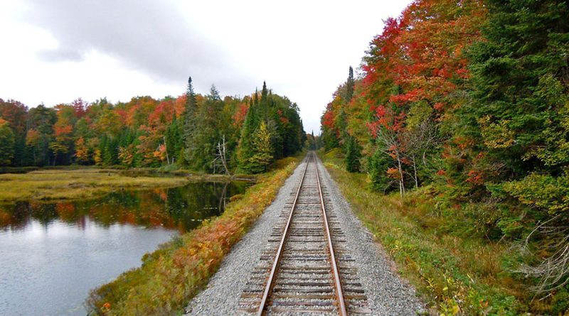 Adirondack Scenic Railroad gives you a chance to enjoy the season's foliage. Round-trip rides include stops at restaurants and points of interest.